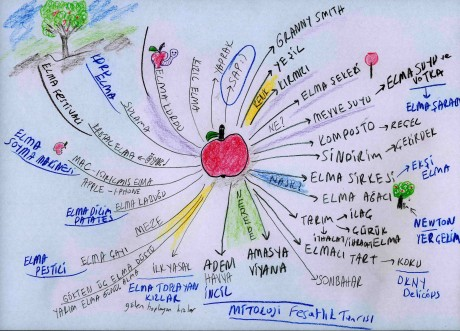 ELMA üzerine bir zihin haritası denemesi :)