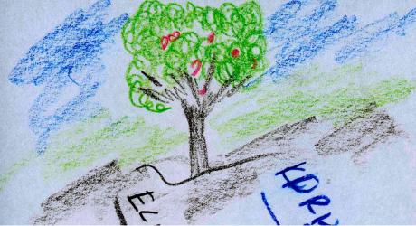 Ağaç... Elma ağacı...